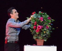 Roses For The Audience